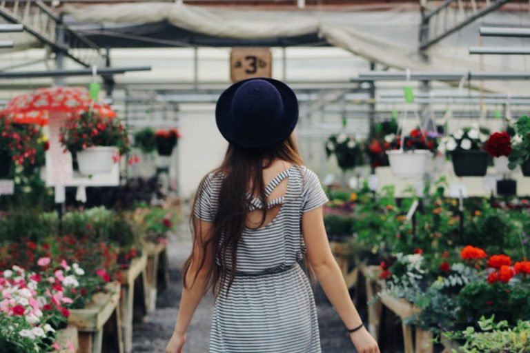 3 Key Pieces of Information for the Frugal Gardener