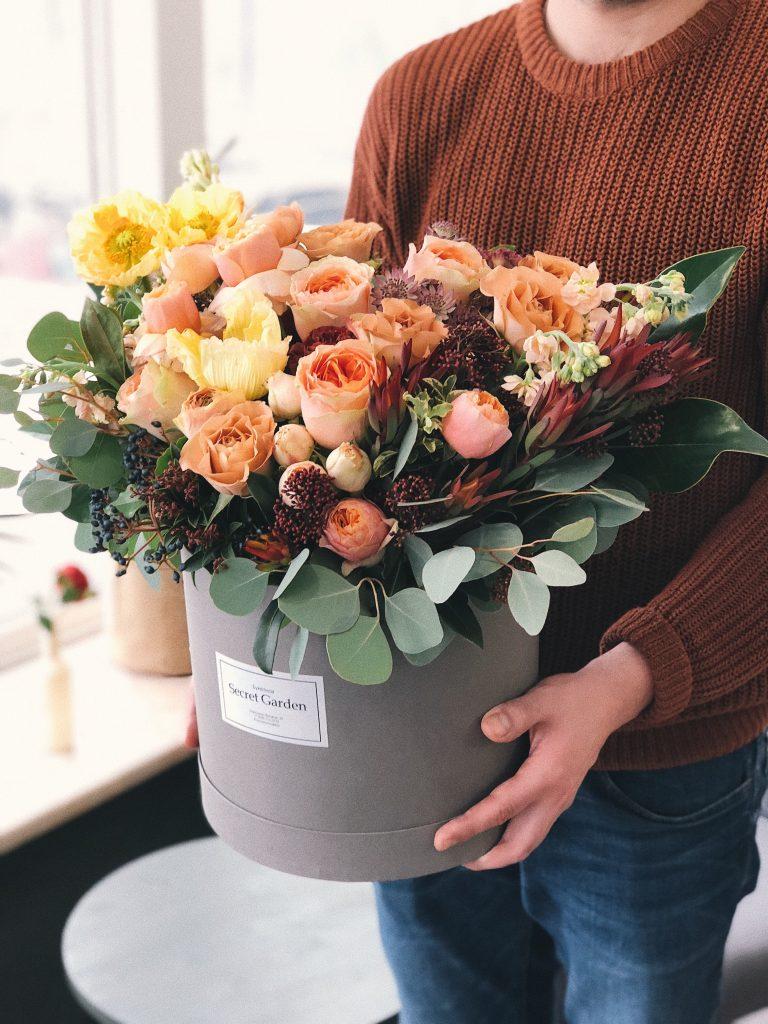 houseplant bloom
