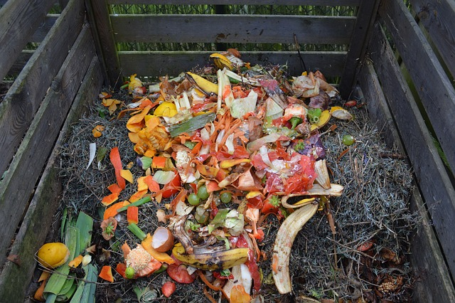 is a compost bin worth the money