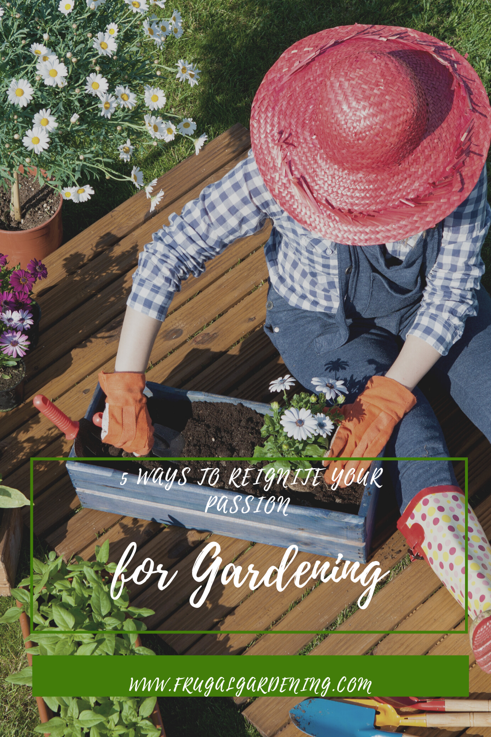 5 Ways to Reignite Your Passion for Gardening