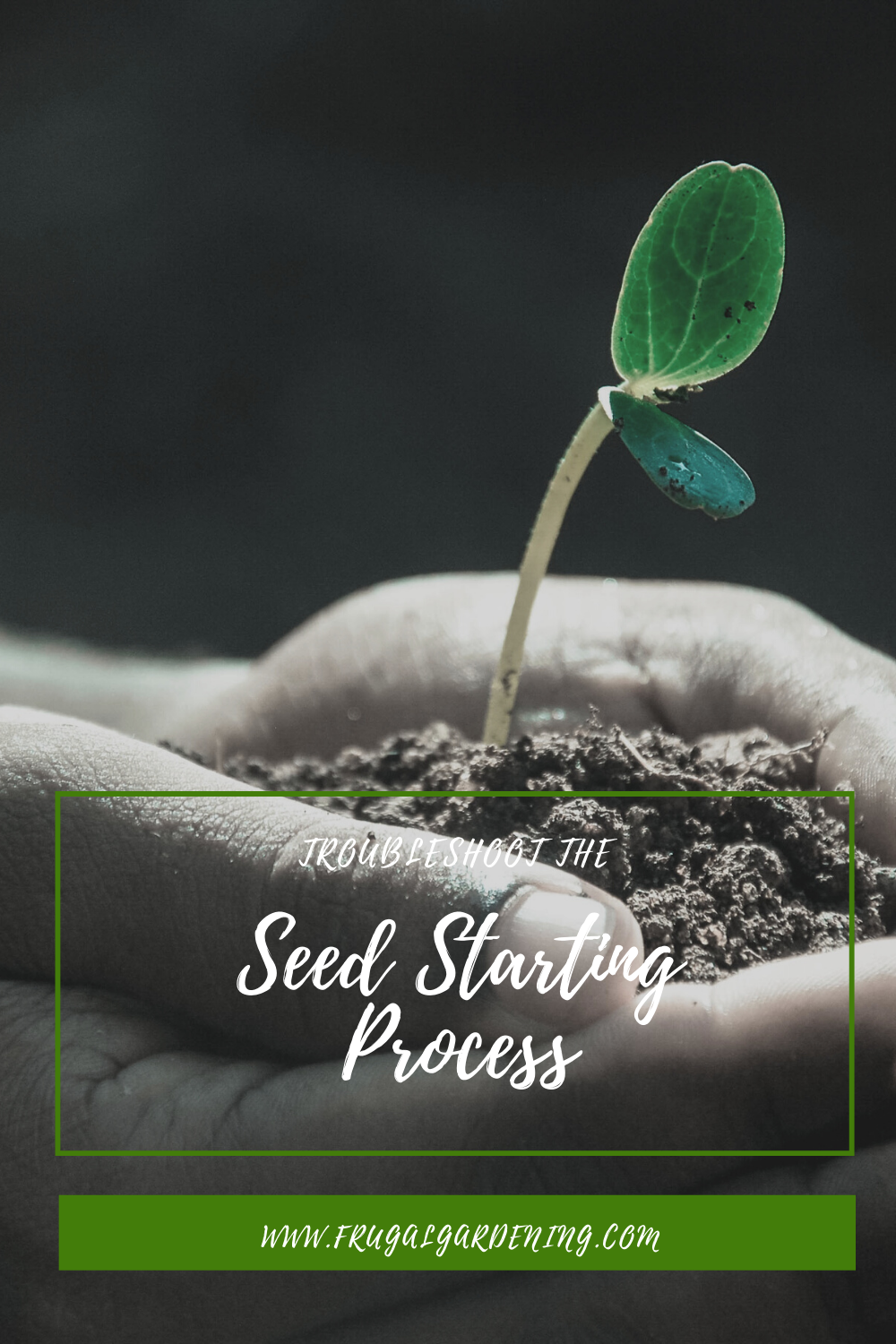 Troubleshoot the Seed Starting Process