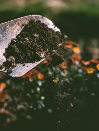 soil recycling checklist