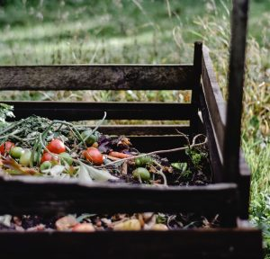 composting household items